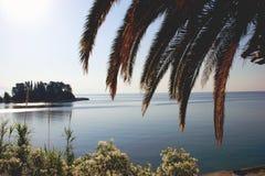 在一个老鼠海岛上的日落在科孚岛海岛上在希腊 免版税库存图片