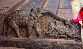 在一个艺术性的石大象雕塑的儿童手 图库摄影