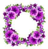 在一个花卉框架的紫色喇叭花花 免版税库存图片