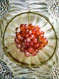 在一个花瓶的大理石有死的飞蛾的 免版税图库摄影