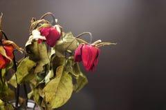 在一个花瓶的干玫瑰在黑背景的木桌上 免版税库存照片