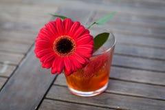 在一个花瓶的红色大丁草作为室外婚礼的装饰 库存图片