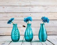 在一个花瓶的蓝色大丁草花在木背景 库存照片