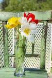 在一个花瓶的郁金香在一把绿色木椅子 免版税库存照片