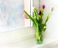 在一个花瓶的郁金香在窗口 库存图片