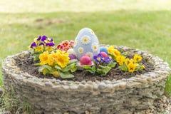 在一个花盆的五颜六色的复活节彩蛋有有角的紫罗兰的开花 免版税图库摄影