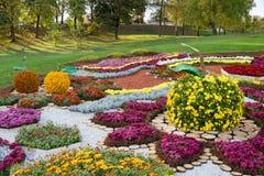 在一个苹果的形状的花床与五颜六色的菊花的 Parkland在基辅,乌克兰 免版税库存照片