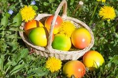 在一个草甸的复活节彩蛋有花的 免版税库存照片