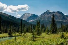 在一个草甸的峰顶在碧玉,亚伯大,加拿大的Tonquin谷的 库存照片