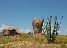 在一个营地的一种奇怪的地质现象在新墨西哥 免版税图库摄影