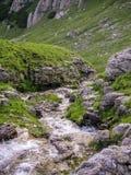 在一个落矶山脉风景的一条旋转的小河 库存图片