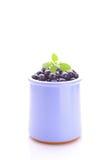 在一个蓝色瓶子的蓝莓 库存照片