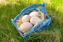在一个蓝色篮子的木复活节彩蛋 库存照片