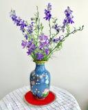 在一个蓝色花瓶的紫色响铃 库存图片