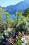 在一个蓝色Mountain湖前面的五颜六色的风景 免版税库存照片