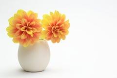 在一个蛋形花瓶的大丽花 免版税库存图片
