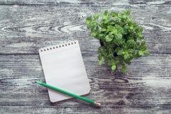 在一个螺旋的空白的笔记本与铅笔和盆的植物gra的 免版税图库摄影