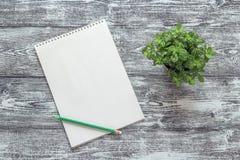 在一个螺旋的空白的艺术册页与铅笔和盆的植物gr的 免版税库存图片