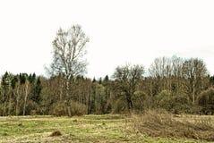 在一个被放弃的村庄的站点在春天在俄罗斯 库存照片