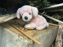 在一个被毁坏的房子的废墟的老狗玩具 免版税库存照片