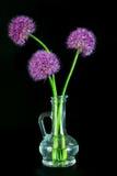在一个装饰瓶的三朵紫色葱属花 免版税库存照片