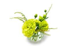 在一个装饰花瓶的绿色花射击了在白色背景 图库摄影