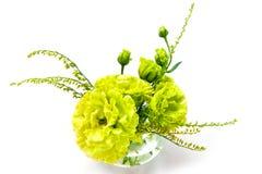 在一个装饰花瓶的绿色花射击了在白色背景 免版税库存图片
