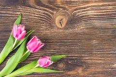 在一个角落的三朵桃红色花在黑暗的木背景,题字的一个地方 图库摄影