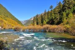 在一个谷的一条小河在九寨沟 免版税库存照片