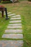 在一个象草的领域的石板走道 免版税库存图片