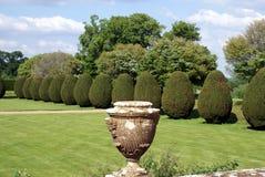 在一个赤柏松修剪的花园庭院的伊丽莎白女王的缸在Yeovil,萨默塞特,英国 免版税库存照片