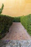 在一个迷宫里面的路在有橙色膏药墙壁的一个庭院里 免版税库存图片