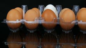 在一个透明塑料盘子的大棕色和一只白色鸡鸡蛋在白色背景 影视素材