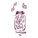 在一个透明容器的蝴蝶 一刹那膝上型计算机光草图样式 免版税图库摄影