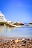 在一个通配海滩(西西里岛,意大利)的壳 免版税图库摄影
