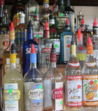 在一个酒吧的酒瓶在基韦斯特岛佛罗里达 免版税库存图片