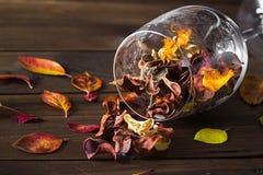 在一个酒杯的秋叶在木桌背景 免版税图库摄影