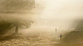 在一个酥脆有雾的秋天早晨的慢跑者 免版税库存图片