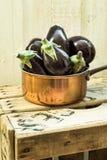 在一个铜浸染工的紫色微型茄子在白色背景的葡萄酒木箱子 库存照片