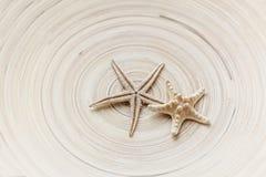 在一个镶边背景木圈子的两个海星 温暖的口气 免版税库存图片
