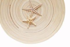 在一个镶边背景木圈子的两个海星 温暖的口气 库存照片
