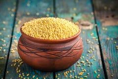 在一个陶瓷碗的有机小米种子 库存照片