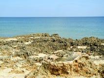 在一个障碍海岛的岩石峭壁在佛罗里达 免版税库存图片