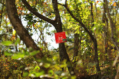 在一个雷区的地雷符号在柬埔寨 库存图片