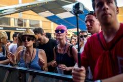 在一个音乐会的人群在生波探侧器节日 免版税库存图片