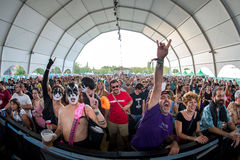 在一个音乐会的人群在Dcode节日 库存图片