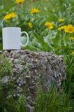 在一个领域的一个空白的加奶咖啡杯子在石头 库存图片