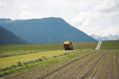 在一个领域的一台拖拉机在山前面 免版税库存图片