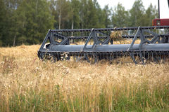 在一个领域的五谷收割机农业转台式组合在夏日 库存图片