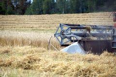 在一个领域的五谷收割机农业转台式组合在夏日 免版税库存图片